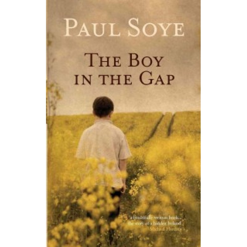 The Boy in the Gap