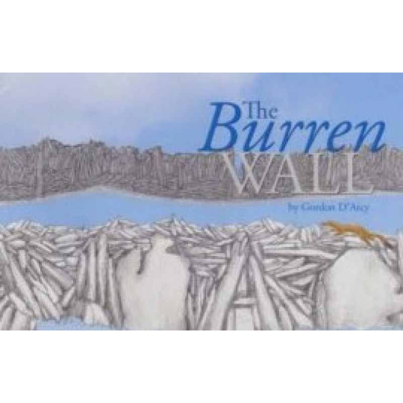 The Burren Wall