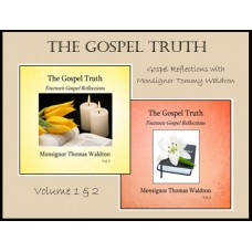 The Gospel Truth, Fourteen Gospel Reflections - Volume 2