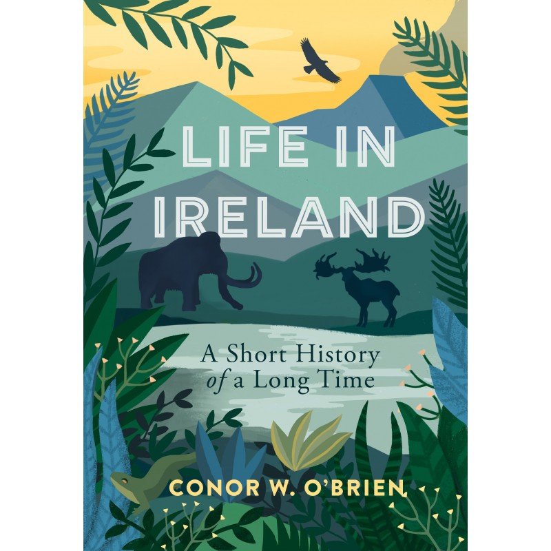 Life in Ireland A Short History of a Long Time