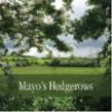 Mayo's Hedgerows