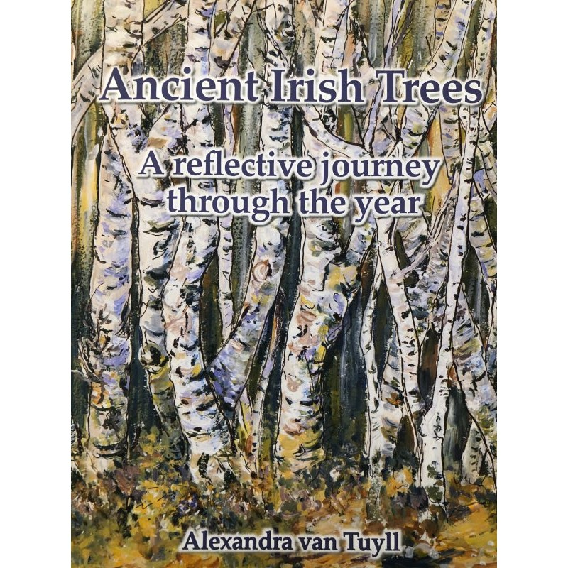 Ancient Irish Trees – A reflective journey through the year