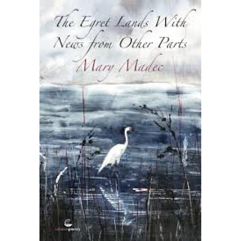 The Egret Lands With News From Other Parts